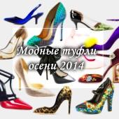 Туфли осени 2014: обзор модных тенденций