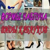 Формы каблука и виды обуви на каблуках